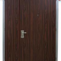 以色列防盗门  art door
